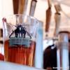 Dale Bros Beer at Brews and Bros.