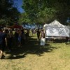 Sabroso Craft Taco Festival