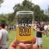 2015 OC Brew Ha Ha Craft Beer Festival
