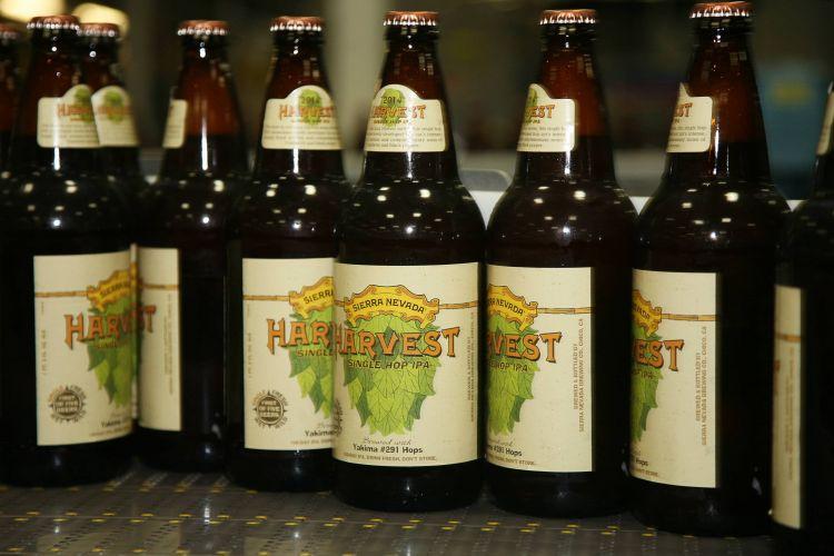Harvest Single Hop IPA 291