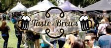 2013 Taste of Brews - White Park Riverside, CA